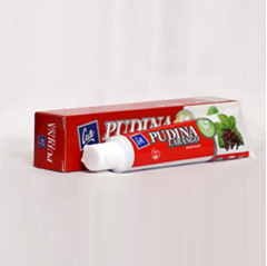 Picture of Pudina Labango Toothpaste (50 gm)
